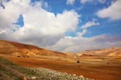 Desert Sinai in the morning Stock Photo