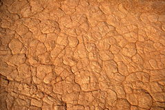 Desert skin Royalty Free Stock Images