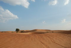 Desert And Sky. A Day Shot of Desert in UAE Royalty Free Stock Images
