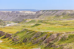 Desert slopes with vegetation at spring. Dry arid desert slopes covered with lush green vegetation at spring time Royalty Free Stock Photo