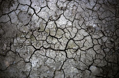 Desert soil. Dry hard cracked soil in the desert Stock Photos