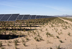 Desert Solar Power Plant Farm Royalty Free Stock Photo