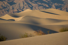 Desert Solitude 1. Wind sculpted dunes at Death Valley National Park in California at sunset stock photography