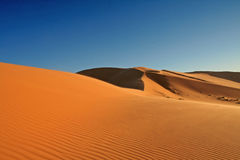 Desert of solitude Royalty Free Stock Photography