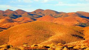 Desert in Australia Stock Photography