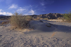 Desert in Southern California near San Diego Stock Image