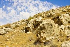 Desert in Spring Stock Image
