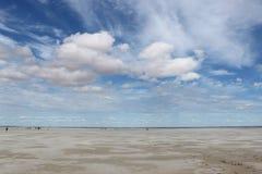 Desert. Steppe in Omsk (Russia) , desert - lake dead Stock Image