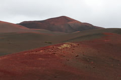 Desert stone volcanic landscape in Lanzarote, Canary Islands Royalty Free Stock Image