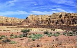 desert stony стоковое фото