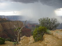 Desert Storm. Rain storm over Grand Canyon Stock Photos