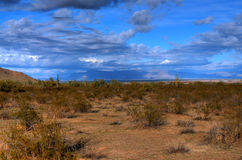 Desert Storm Forming Royalty Free Stock Photography