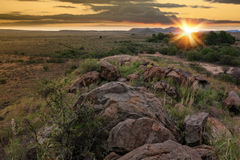 Desert sun Stock Image