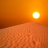 Desert sunrise Royalty Free Stock Image