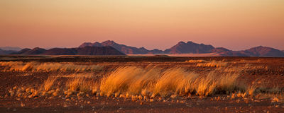 Desert at sunrise near Sossusvlei Stock Photos