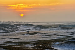 Desert Sunrise Stock Photos