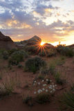 Desert sunrise Stock Photography