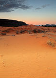 Desert sunrise. Stunning view in the Utah desert Stock Photos