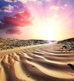 Desert on sunset Royalty Free Stock Photography
