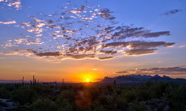 Desert Sunset. Sunset over the American Southwest Arizona desert in the town of Apache Junction, looking towards the city of Phoenix Royalty Free Stock Photo