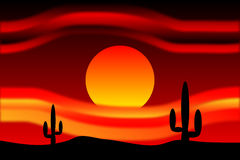 Desert sunset. With cactus plants Royalty Free Stock Image