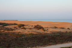 Desert sunset Stock Photos