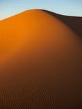 Desert at sunset. Sunlight highlighting the dunes in the Sahara Stock Images