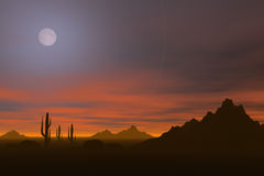 Desert sunset Royalty Free Stock Photography