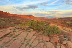 Desert sunset in Capitol Reef. Sunset landscape with dawn sky in the Utah desert, USA Stock Photo