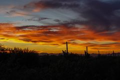 Colorful desert sunset in Arizona royalty free stock images