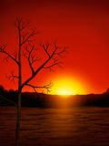 Desert Sunset Digital Painting. Digital painting of the sun setting under a red desert sky Royalty Free Stock Image