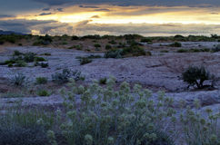 Desert Sunset Utah Landscape Grand Staircase Escalante Royalty Free Stock Photos