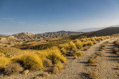 Desert of Tabernas. This is a view of the mountains of the desert of Tabernas stock photo