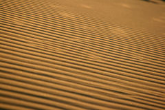 Desert texture Stock Photo