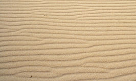 Desert texture Royalty Free Stock Image