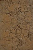 Desert Texture. Cracked earth with emphasis going to the center Royalty Free Stock Image