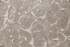 Desert texture Stock Images