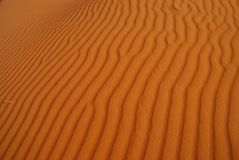 Desert texture. Erg Chebbi, Sahara, Morocco Royalty Free Stock Photo