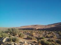 Desert. Town Douz,Kebili ,Tunisia Royalty Free Stock Images
