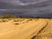 Desert Track Stock Photography
