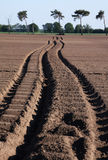 Desert tracks stock photos