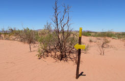 Desert trail and direction arrow pointer, sign Stock Photo