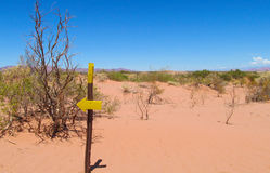Desert trail and direction arrow sign. Desert red sandy soil and bushes on it. landscape of red desert. Desert trail and direction arrow pointer, sign stock photos