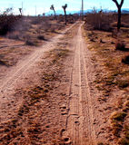 Desert Trail. Leading to the mountains Royalty Free Stock Images