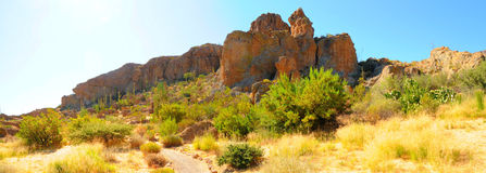 Desert Trail Panorama Royalty Free Stock Images