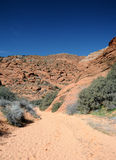 Desert Trail - Snow Canyon State Park Stock Image