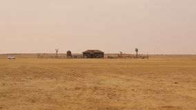 Desert Train station at Rajasthan India stock video footage