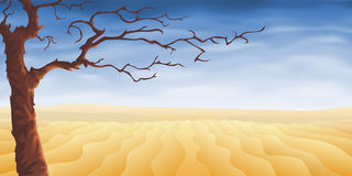 Desert tree Royalty Free Stock Photo
