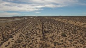 Desert tree point of interest drone stock footage