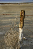 Desert Tumbleweed and Fencing. An old fence post and rusted barbed wire traps a tumbleweed on a desert salt flat in California, USA Royalty Free Stock Photography